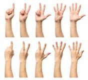 Мужские руки подсчитывая от изолированные одно к 5 Стоковое Изображение RF