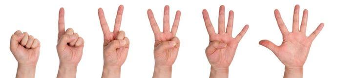 Мужские руки подсчитывая от нул к 5 изолированные на белой предпосылке Стоковые Изображения RF