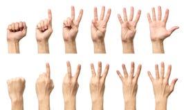 Мужские руки подсчитывая от изолированные нул к 5 Стоковые Изображения RF