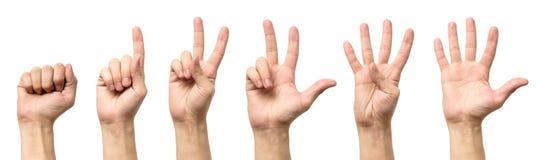 Мужские руки подсчитывая от изолированные нул к 5 Стоковые Изображения