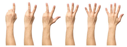 Мужские руки подсчитывая от изолированные одно к 5 Стоковое фото RF