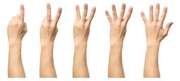 Мужские руки подсчитывая от изолированные одно к 5 Стоковое Фото