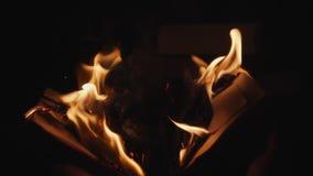 Мужские руки раскрывают горящую книгу сток-видео