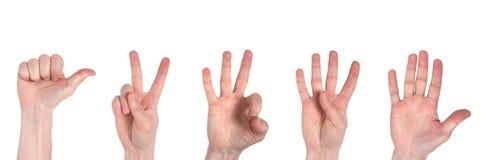 Мужские руки считая от одно к 5 изолированные на белой предпосылке стоковые изображения