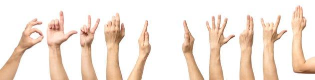 Мужское собрание жеста рукой и знака изолированное над белым backgr Стоковое Изображение