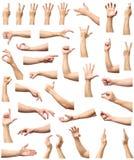 Мужское собрание жеста рукой и знака изолированное над белым backgr Стоковое Изображение RF