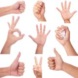 Мужское собрание жеста рукой и знака Стоковые Фото