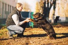 Мужское cynologist, тренировка полицейской собаки внешняя Стоковые Фото