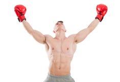Мужской боксер моля или ища для воодушевленности Стоковое Изображение