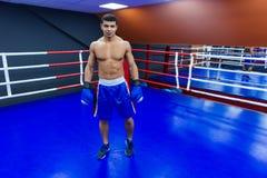 Мужской боксер стоя в боксерском ринге Стоковая Фотография RF
