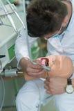 Мужской зубоврачебный студент практикуя на кукле Стоковая Фотография