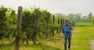Мужской исследователь смотря деревья пока пишущ на доске сзажимом для бумаги видеоматериал