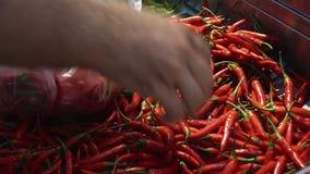 Мужской клиент положил перец Chili в полиэтиленовый пакет в супермаркете еды пока ходящ по магазинам сток-видео