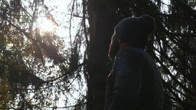 Мужской посмотрите вверх на солнце в лесе взрослый человек был потерян в полесьях сток-видео