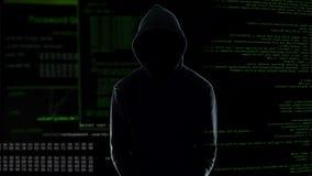 Мужской программист стоя в наручниках после совершать злодеяние кибер, наказание акции видеоматериалы