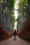 Мужской путешественник стоя перед бамбуковым лесом с рюкзаком фотографа стоковое изображение