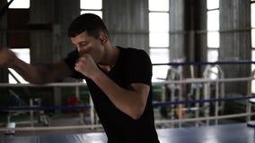 Мужской спортсмен в черных футболке и рубашках тренируя его пунши Двигать и избежание с оппонентом тени Нагревать Гай сток-видео