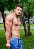 Мужской спорт спортсмена Стоковое Изображение RF