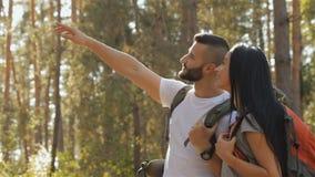 Мужской hiker поднимает его руку вверх сток-видео
