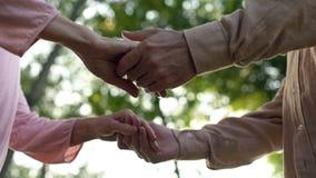 Мужчина и женские пенсионеры держа руки, романтичную дату на открытом воздухе, приглашение стоковое фото
