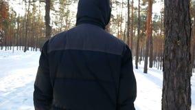 Мужчина леса зимы сток-видео