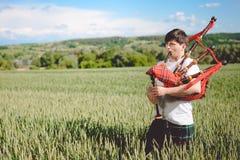 Мужчина наслаждаясь играть пускает по трубам в традиционном килте на зеленом цвете outdoors копирует поле лета космоса Стоковая Фотография