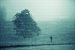 Мужчина на туманном луге с предпосылкой двоичных чисел Стоковые Изображения RF