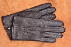 мужчина перчатки Стоковые Изображения RF