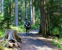 Мужчина постаретый серединой на походе Стоковое Изображение RF