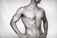 мужчина тела сексуальный Стоковое фото RF