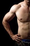 мужчина черного тела изолированный половиной мышечный стоковое изображение rf
