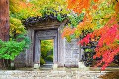 Музей в Японии во время осени Стоковые Фото