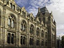 Музей естественной истории в Kensington, Лондоне стоковое фото rf