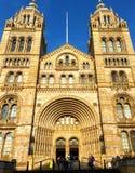 Музей Лондон Англия естественной истории Стоковое Изображение