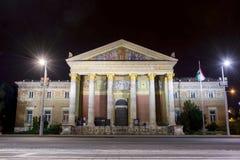 музей budapest искусств точный стоковые фото
