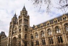 музей london истории естественный стоковая фотография
