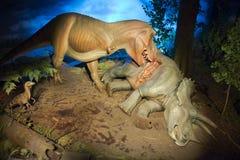 Музей T-Rex Milwaukee общественный, тиранозавр Rex Стоковые Фото
