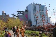 Музей Whitney Стоковое Изображение RF