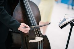 Музыкант играет двойной басовый смычок стоковые фотографии rf