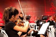 музыкант играя скрипку Стоковые Фотографии RF