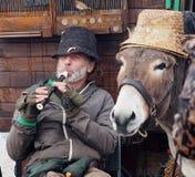 Музыкант с ослом в Dingle Ирландии Стоковая Фотография