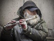 Музыкант улицы Стоковые Изображения RF