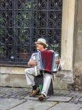Музыкант улицы Стоковые Фото