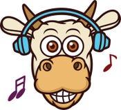 Музыка коровы слушая с шаржем наушников Стоковое Фото