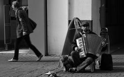 Музыка улицы с аккордеоном Стоковые Фотографии RF