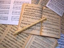 Музыка чистого листа Конец-вверх каннелюра Стоковое Изображение RF