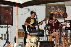 Музыкальный петух Стоковая Фотография RF