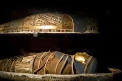 мумия Стоковое Изображение