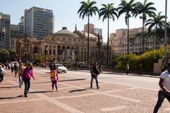 Муниципальный театр Сан-Паулу стоковые фото