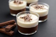 Мусс шоколада Стоковое Фото